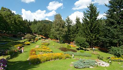 Trofeo parco appennino tosco emiliano - Giardini di montagna foto ...